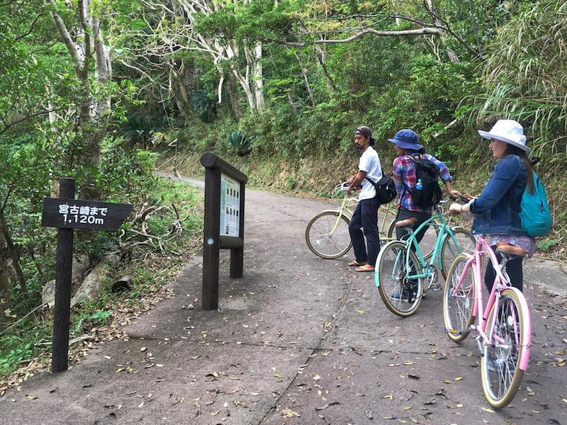 奄美宮古崎の自転車ツーリングの山道
