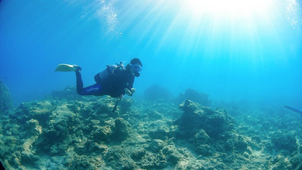 奄美大島の体験ダイビング