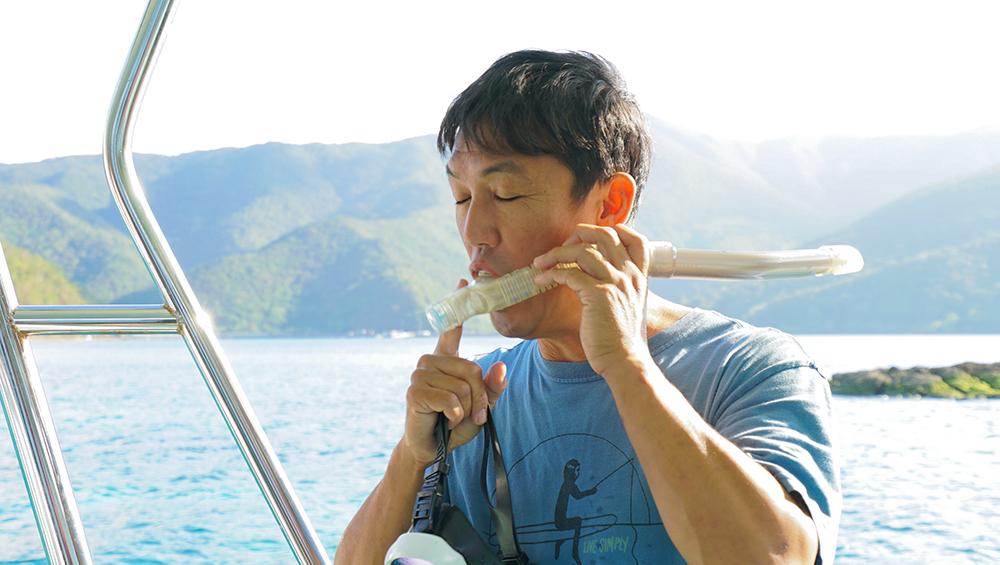 奄美大島 大島海峡 スノーケリング アクアダイブコホロ コホロ amami kohollo