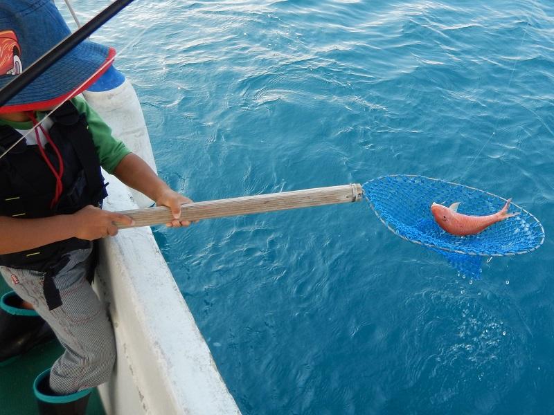 奄美ボブマリン船釣り体験5
