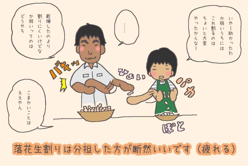 奄美島ジューリ漫画:落花生