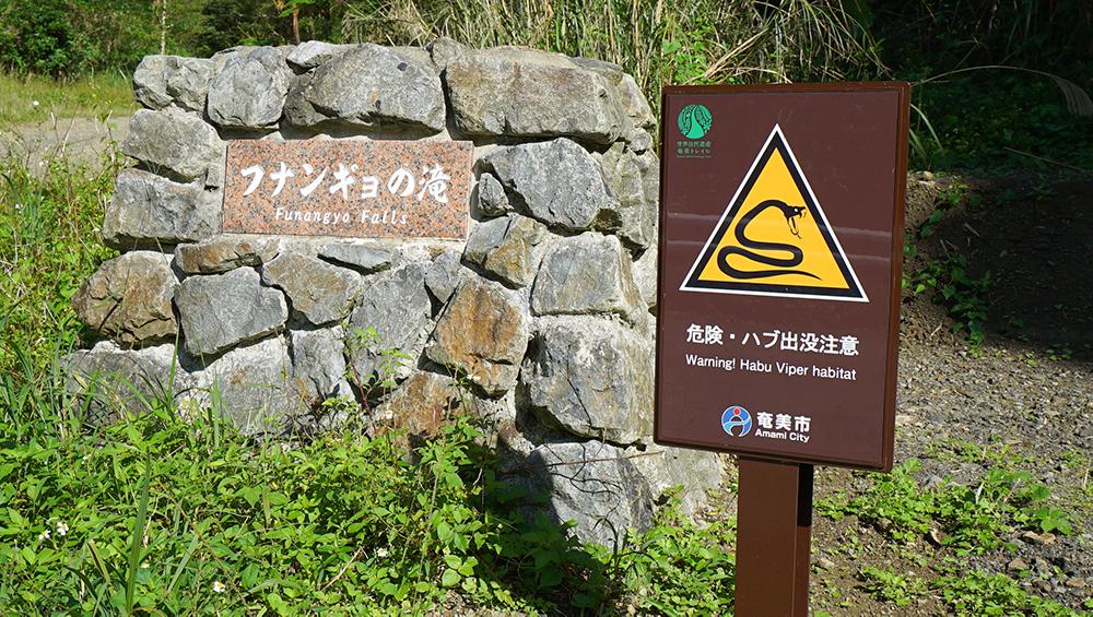 奄美市住用 レンタサイクル 三太郎の里 自転車 フナンギョの滝 amami bicycle