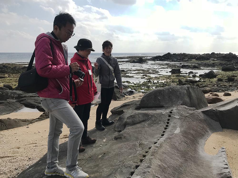 海岸の石をながめる男女