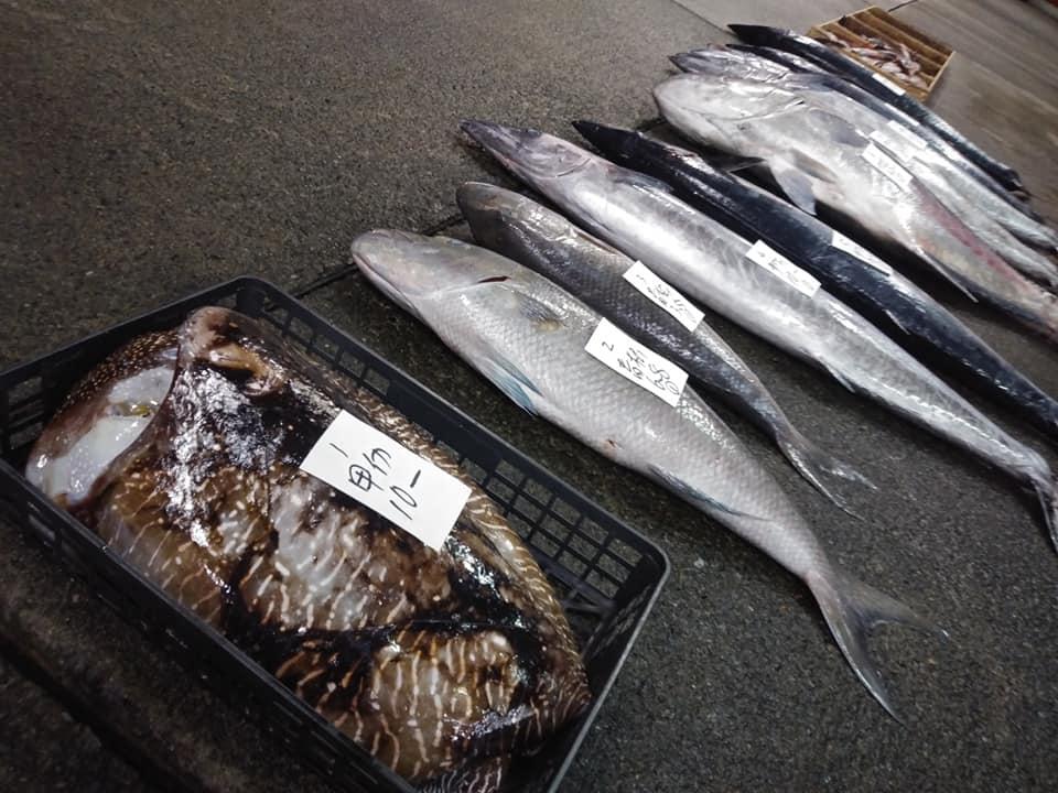 奄美市名瀬の名瀬漁協の競りの魚