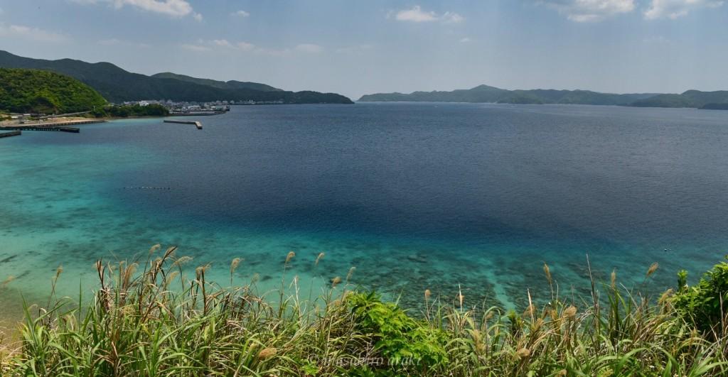 奄美瀬戸内町のコーラルブルーの海