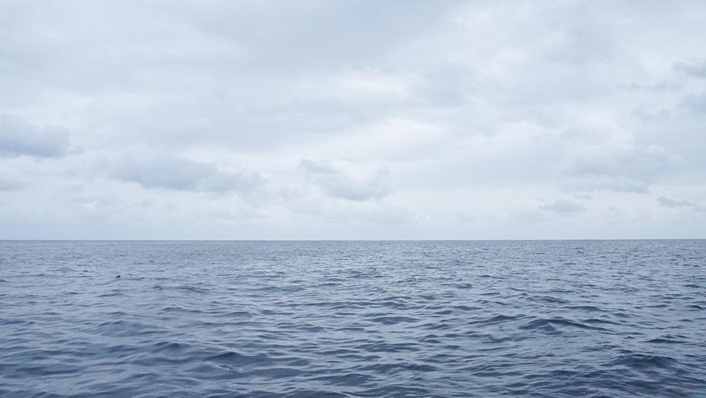 ホエールウォッチング中の奄美の海