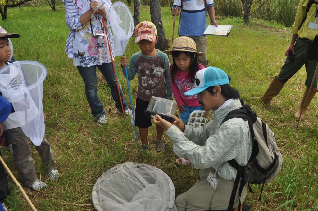 自然観察する子どもたち