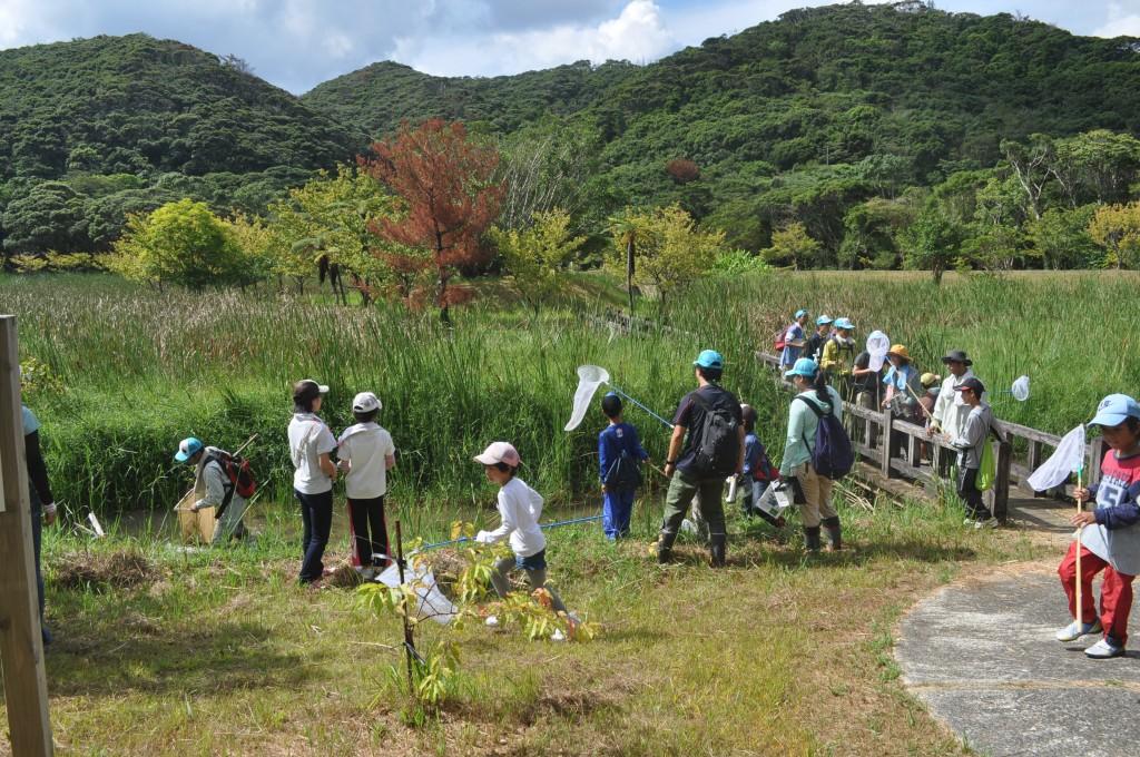 奄美野生生物保護センターでの自然観察会