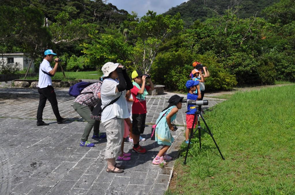 奄美の森で野鳥を観察する人々