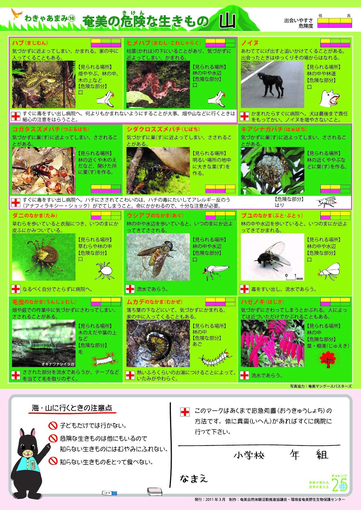 奄美の山の危険生物