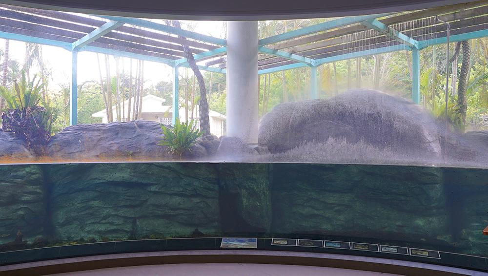 マーグローブパーク内展示水槽