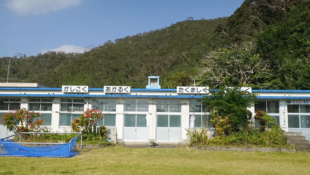 奄美大島の節子(せっこ)集落にあるロビンソンファーム