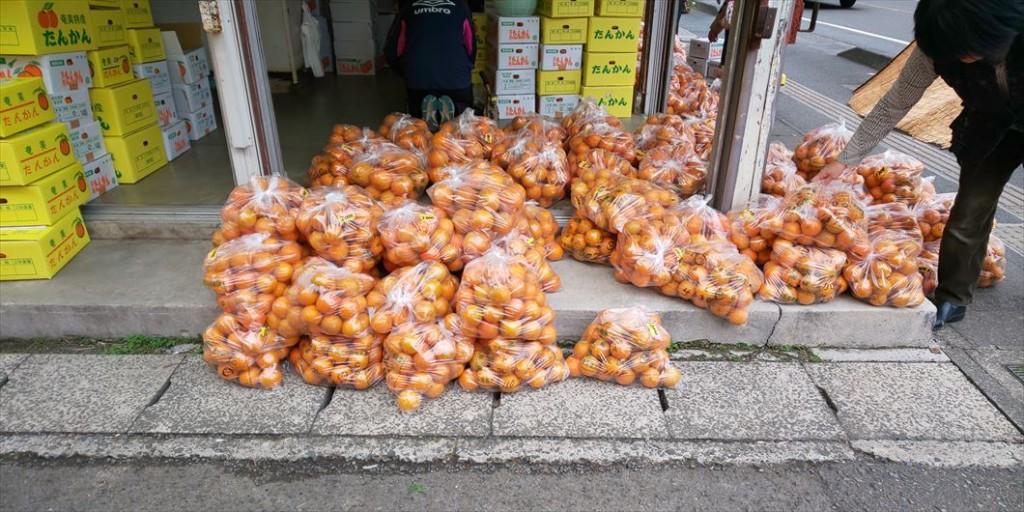 奄美大島の八百屋に並ぶ収穫されたタンカン