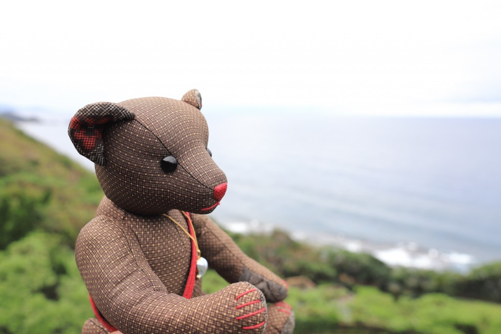磯平パークの断崖絶壁からの風景