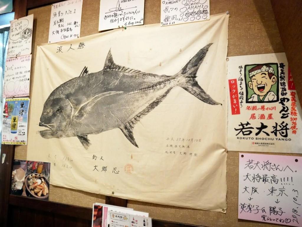 奄美大島の居酒屋若大将店内魚拓
