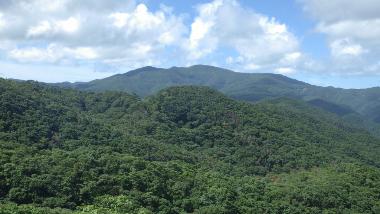 ネイチャーワンダーアイランド~vol.7|Road to 世界自然遺産 世界遺産とは??