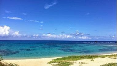 【案内人に聞く】奄美大島旅行プラン作りのコツとめぐり方
