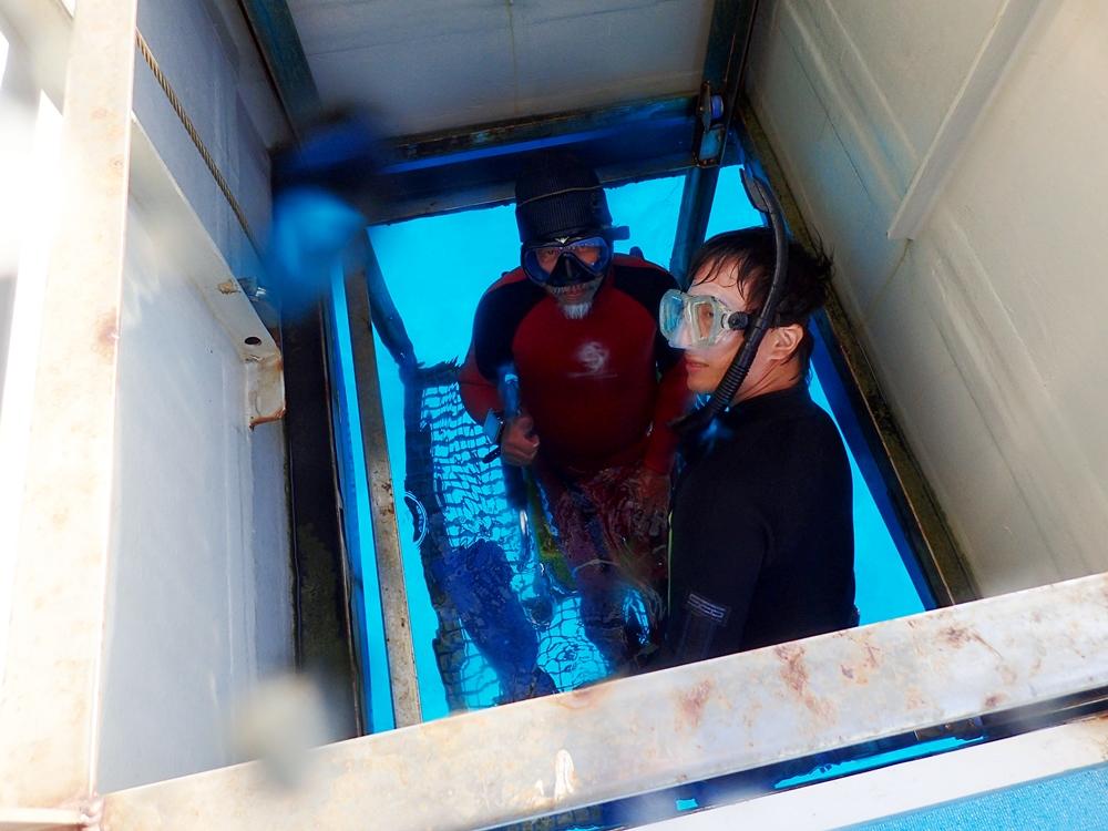 バリアフリーのダイビングボート