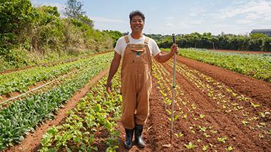 島野菜のおいしさを子どもたちに伝えたい。無農薬で野菜を育てるくすだファーム